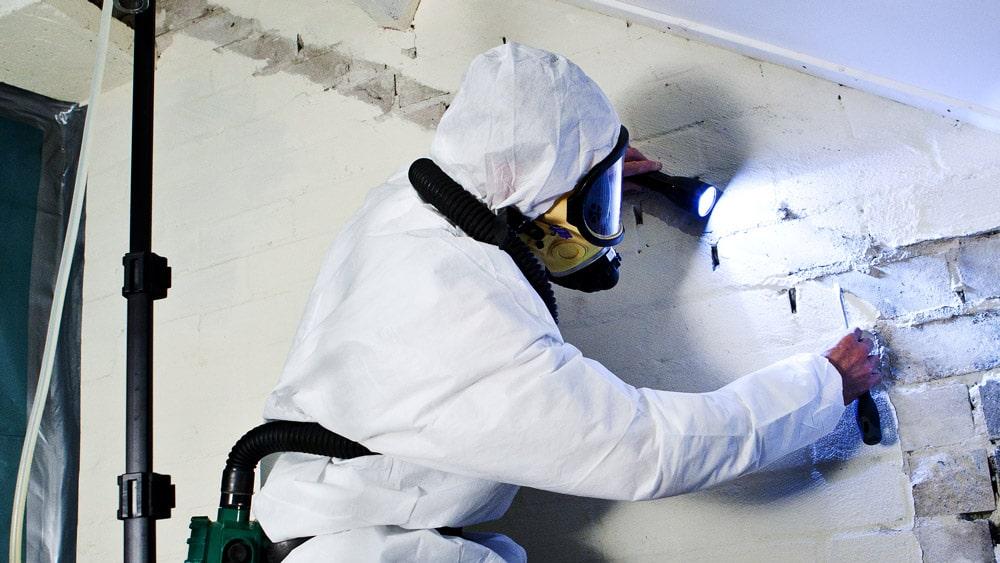 rps-alle-hens-aan-dek-voor-asbestbranche-5-2
