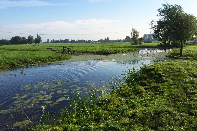 RPS-nieuws-waterschappen-raamcontract
